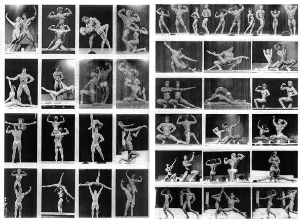 Bodybuilding poses chart