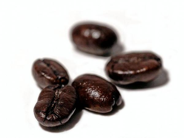Σπόροι καφέ