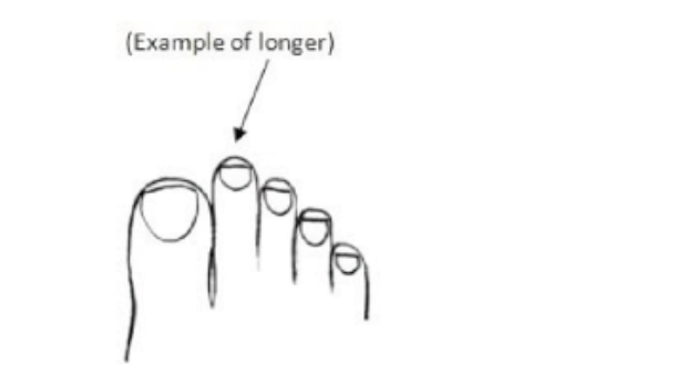 Όσοι έχουν μεγαλύτερο δεύτερο δαχτυλάκι του ποδιού είναι πιο πιθανό να ανήκουν σε όσους γυμνάζονται συστηματικά, αποκαλύπτει έρευνα Αμερικανών επιστημόνων.