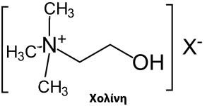 Χολίνη