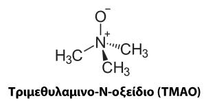 Τριμεθυλαμινο-Ν-οξείδιο (TMAO)