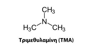 Τριμεθυλαμίνη (TMA)