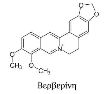 βερβερίνη berberine μπερμπερίνη