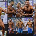 2762 επιλεγμένες φωτογραφίες από το IFBB-ΕΟΣΔ 30ο Πανελλήνιο Πρωτάθλημα Σωματικής Διάπλασης και Φίτνες. Με το φακό του XBody.gr, και τη στήριξη της Gold Touch Nutrition.