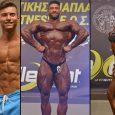 2559 επιλεγμένες φωτογραφίες από το IFBB-ΕΟΣΔ 23ο Πανελλήνιο Κύπελλο Σωματικής Διάπλασης και Φίτνες. Με το φακό του XBody.gr, και τη στήριξη της Gold Touch Nutrition.